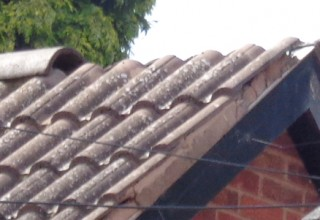 Broken or slipped ridge tiles ?