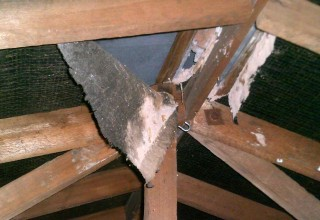 Is Your Roofing Felt Damaged, Do You Have Damp In Your Roof Space?